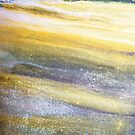 Lavender Fields by Barbara Ingersoll