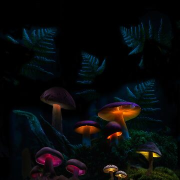 MUSHROOM FOREST by johnnyssandart