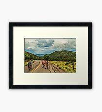 Fossil Creek Road Framed Print