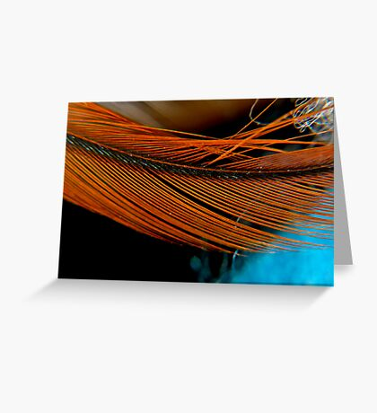 Feather #2 Greeting Card