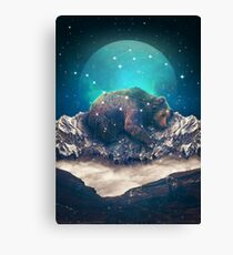 Unter den Sternen | Ursa Major Leinwanddruck