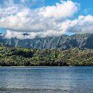 Hanalei Kauai by linaji