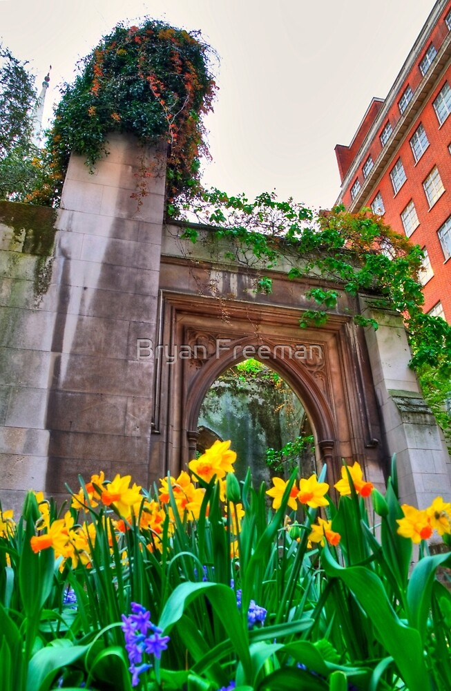 St Dunstan in the East & The Deadly Daffodils - London by Bryan Freeman
