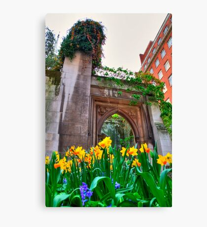 St Dunstan in the East & The Deadly Daffodils - London Canvas Print