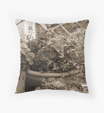 Window Plants Throw Pillow