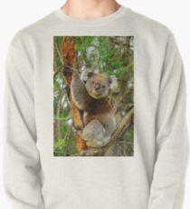 Koala Pullover