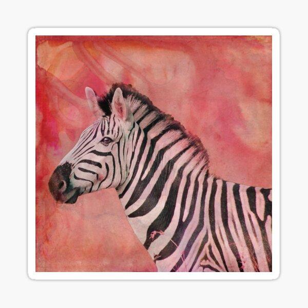 African Zebra Sunset Sticker