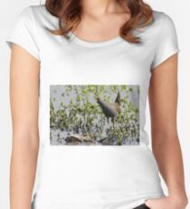 Australian Spotted Crake Women's Fitted Scoop T-Shirt