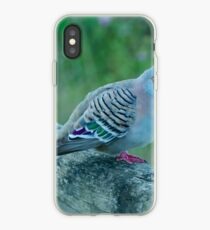 Crested Pigeon iPhone Case
