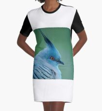 Crested Pigeon Graphic T-Shirt Dress