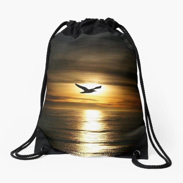 Skybird in Antarctica Drawstring Bag