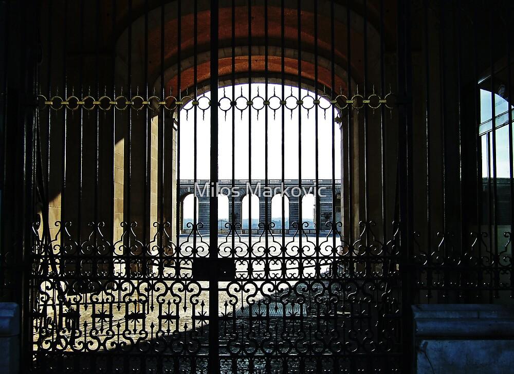The Entrance by Milos Markovic