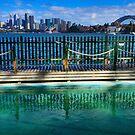 Pool With A View - Cremorne - Sydney Australia by Bryan Freeman