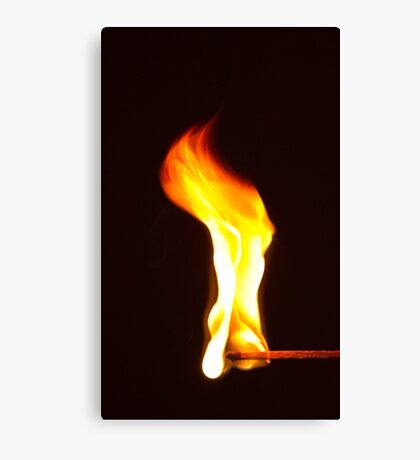 Don't Play With Fire! Canvas Print