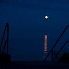 Full Moon by Susan A Wilson