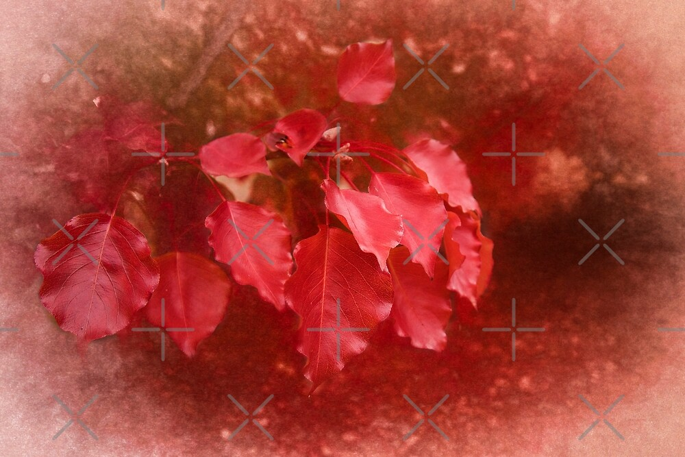 An Autumn Bunch by Elaine Teague