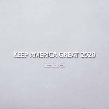Re-elect Donald Trump 2020 by morningdance