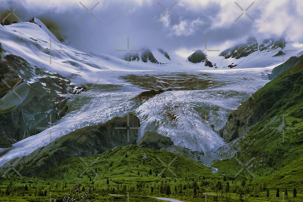 Worthington Glacier, Alaska by Vickie Emms