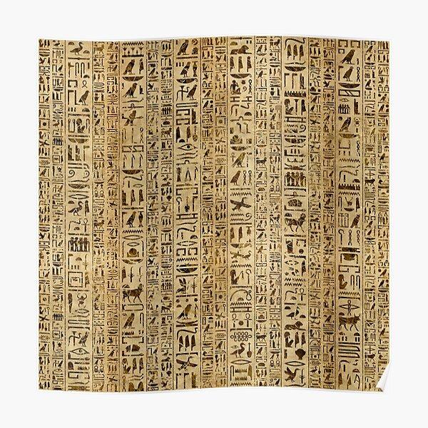 Egyptian hieroglyphs on papyrus Poster