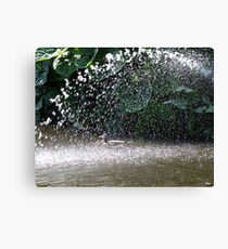 Showerbath Canvas Print