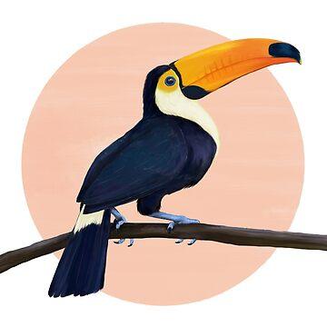 Tucán tropical de lauragraves