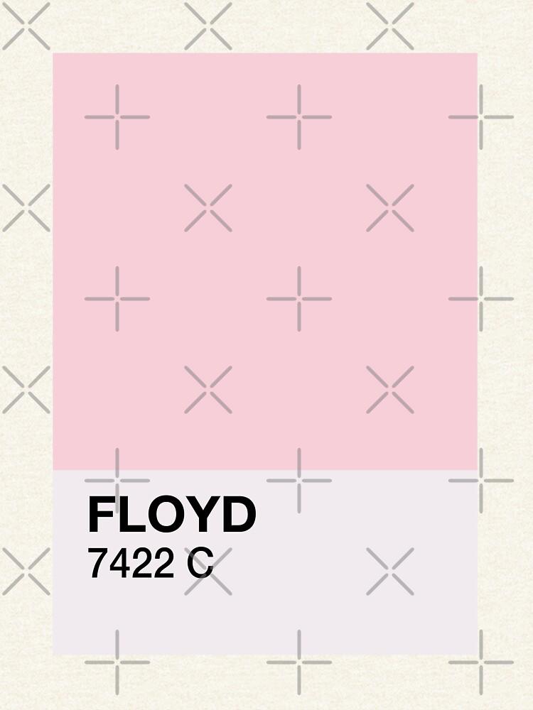 PINK Floyd de shaylikipnis
