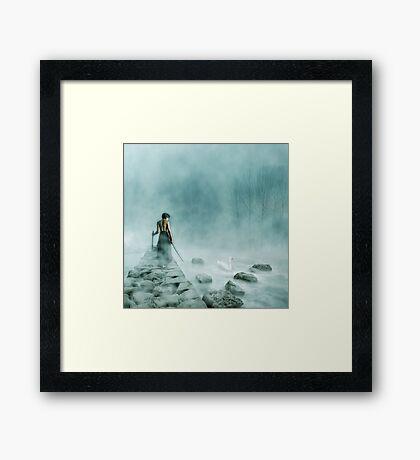 The Silver Swan Framed Print