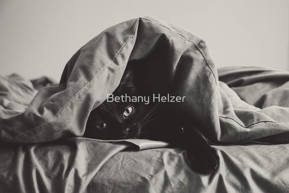 My Lazy Cat 1 by Bethany Helzer
