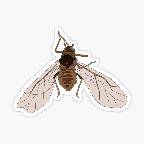 The Mighty Aphid Sticker