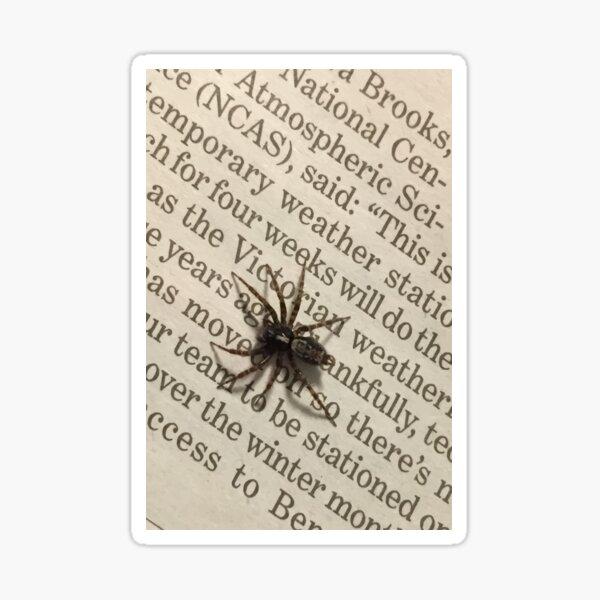Spider on a book Sticker