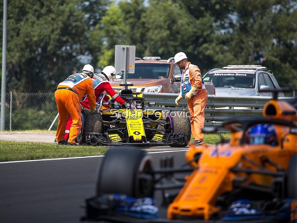 Formula 1 racing  by Srdjan Petrovic