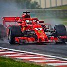 Sebastian Vettel  by Srdjan Petrovic