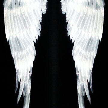Angel Wings white velvet2 by atlasartsn