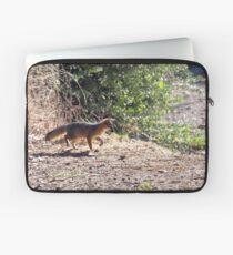 Channel Island Fox (Urocyon littoralis), Santa Cruz Island, California Laptop Sleeve