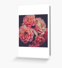Roses in the night garden  Greeting Card