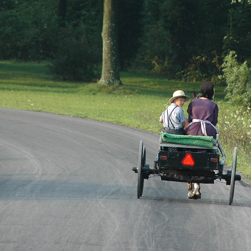 Wagon Ride by Michael  Dreese
