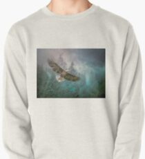 Land of The Eagle Pullover