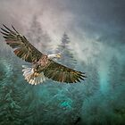 Land of The Eagle by Brian Tarr