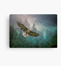 Land of The Eagle Canvas Print