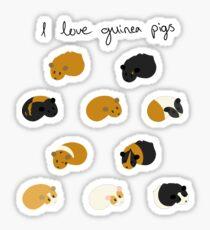 I Love Guinea Pigs - Individual Stickers Sticker