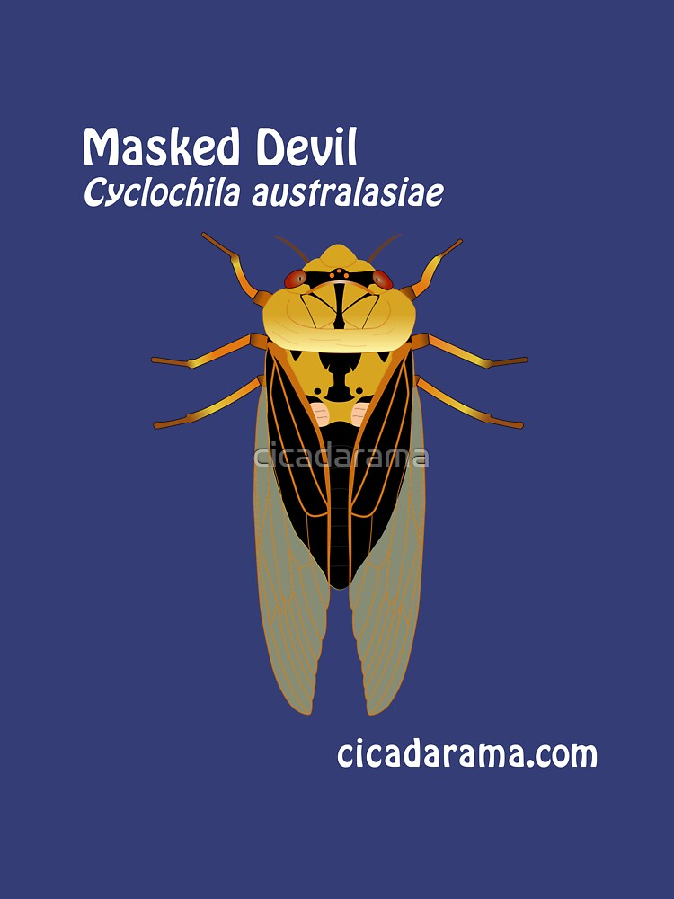 Masked Devil cicada (Cyclochila australasiae) - dark colour shirts by cicadarama