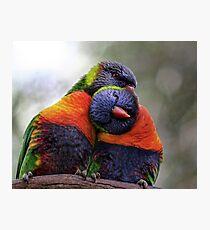 Colorbond Photographic Print