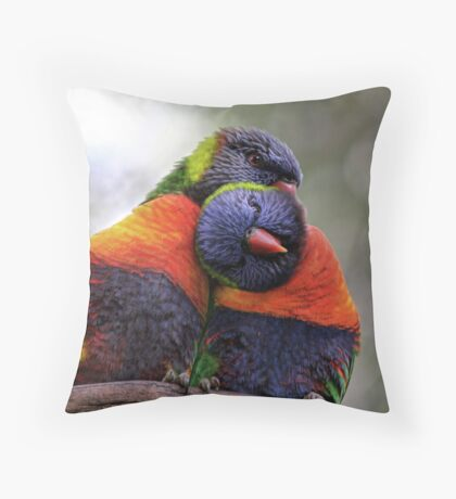 Colorbond Throw Pillow