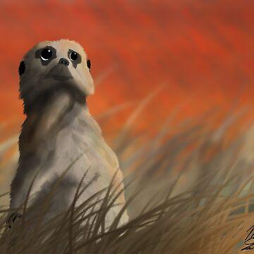 Meerkat in the Serengeti by mlubbe