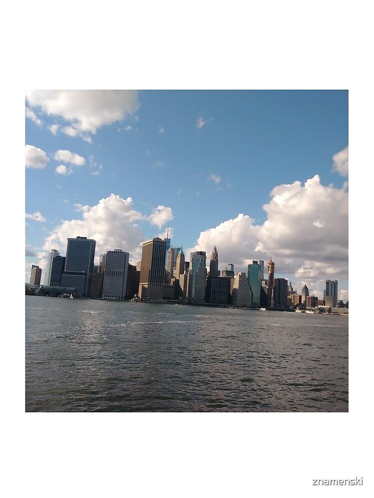Manhattan, #Manhattan, New York City, #NewYorkCity, New York, #NewYork by znamenski