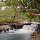 Falls on the Dulhunty River by Richard  Windeyer