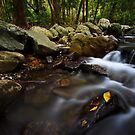 The Flowing Water Flows Fast Like by Matthew Stewart