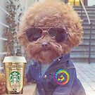 Dog in Jean Jacket Drinking Cappuccino by #PoptART products from Poptart.me
