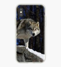 Arctic Wolf on Rock Cliff iPhone Case