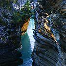 The Canyon by Kim Cinnamon